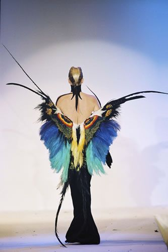 Butterfly Thierry Mugler