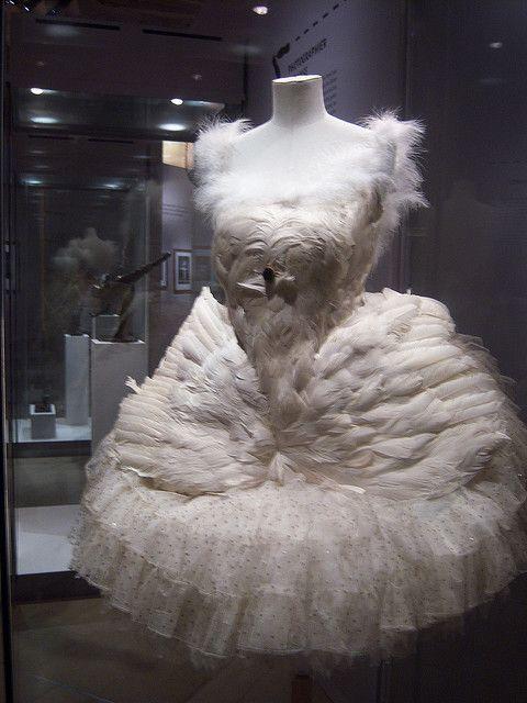 Anna Pavlova's White Swan costume